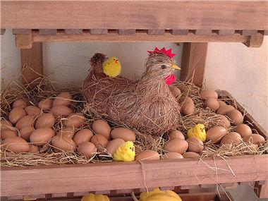先有鸡还是先有蛋?
