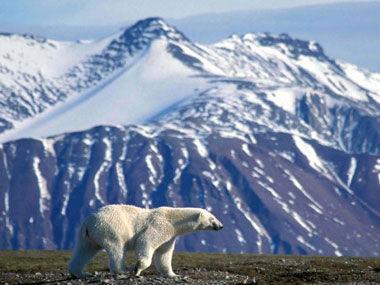 斯坦福公开课:应对气候变化——后哥本哈根时代